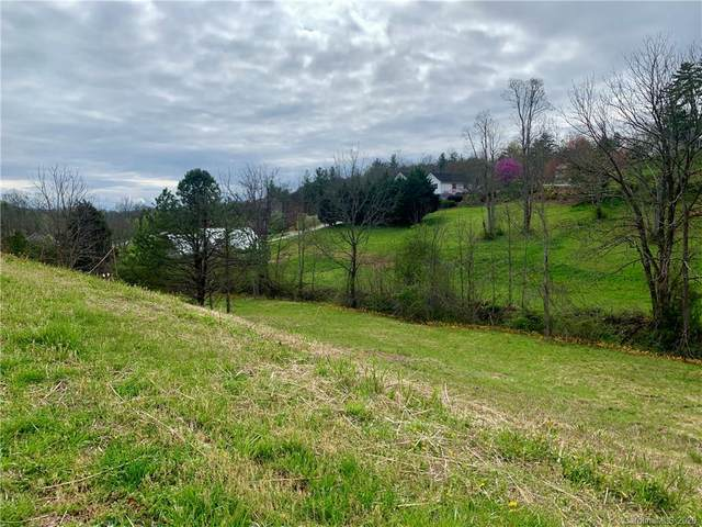 55 Double Brook Drive, Weaverville, NC 28787 (#3608138) :: Rinehart Realty