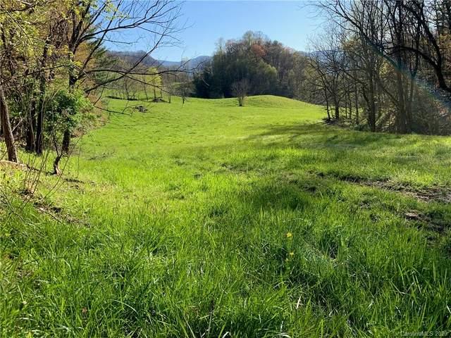 2101 Baltimore Branch, Hot Springs, NC 28743 (#3608496) :: Carolina Real Estate Experts