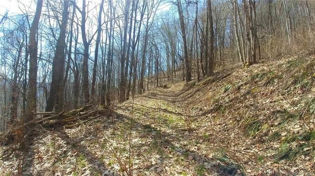 29 Mountainside Drive #29, Waynesville, NC 28786 (#3610595) :: Scarlett Property Group