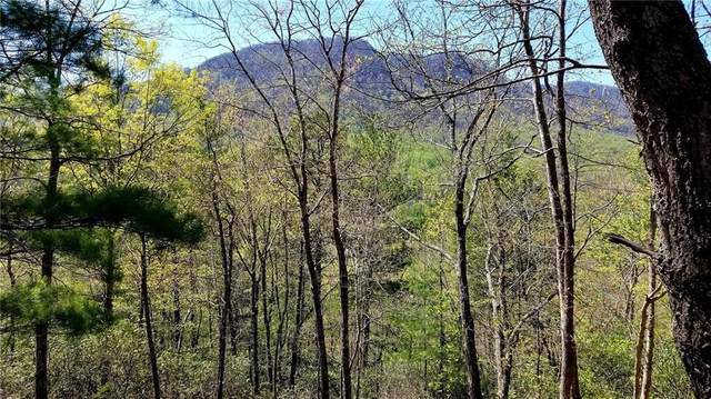 0 Linville Drive #2, Marion, NC 28752 (#3611064) :: Stephen Cooley Real Estate Group