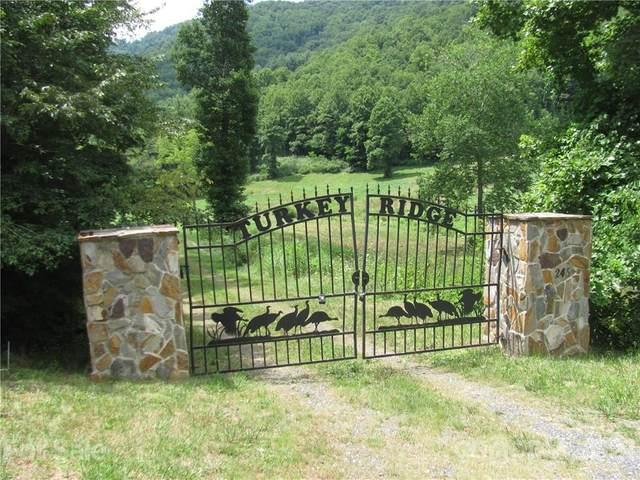 245 Paint Fork Road, Barnardsville, NC 28709 (#3611563) :: LePage Johnson Realty Group, LLC