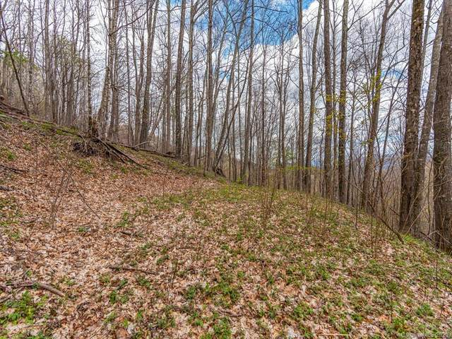 Lot 267 Winding Creek Drive, Waynesville, NC 28786 (#3612137) :: Johnson Property Group - Keller Williams