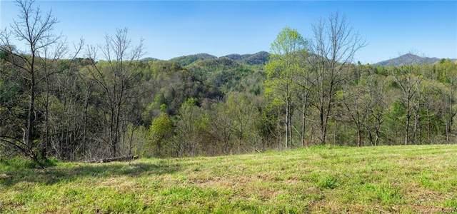 6753 Bear Creek Road, Marshall, NC 28753 (#3613611) :: Carolina Real Estate Experts