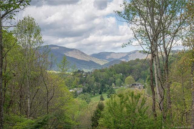 17 Greenview Drive, Maggie Valley, NC 28751 (#3616998) :: Keller Williams South Park
