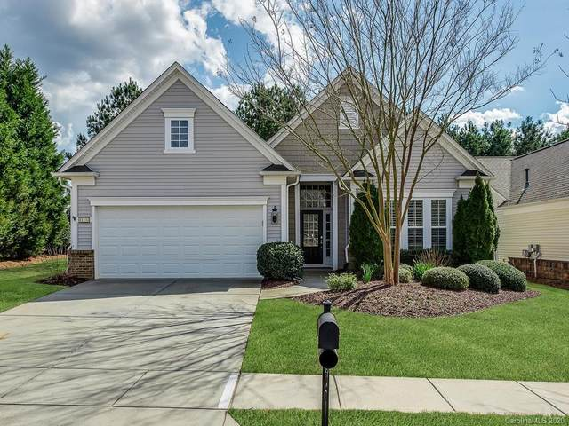 41134 Calla Lily Street, Indian Land, SC 29707 (#3618351) :: SearchCharlotte.com