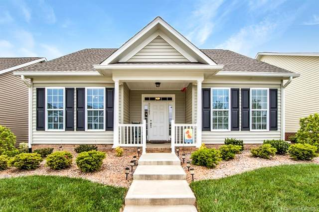 11123 Bailey Park Nature Drive, Cornelius, NC 28031 (#3621101) :: High Performance Real Estate Advisors