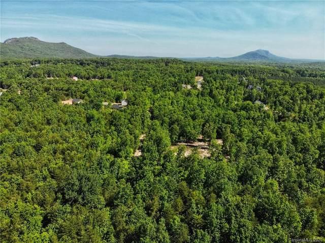 1030 Pinnacle Woods Court, Kings Mountain, NC 28086 (#3622445) :: MartinGroup Properties