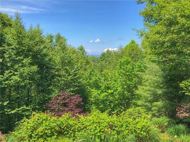 20 Connies Cove, Waynesville, NC 28786 (#3625079) :: Ann Rudd Group