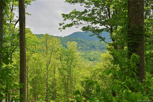 148 Wandering Oaks Way #83, Asheville, NC 28805 (#3625871) :: Stephen Cooley Real Estate Group