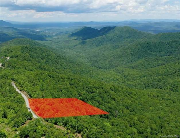Lot 195 Catawba Falls Parkway #195, Black Mountain, NC 28711 (#3626939) :: MartinGroup Properties