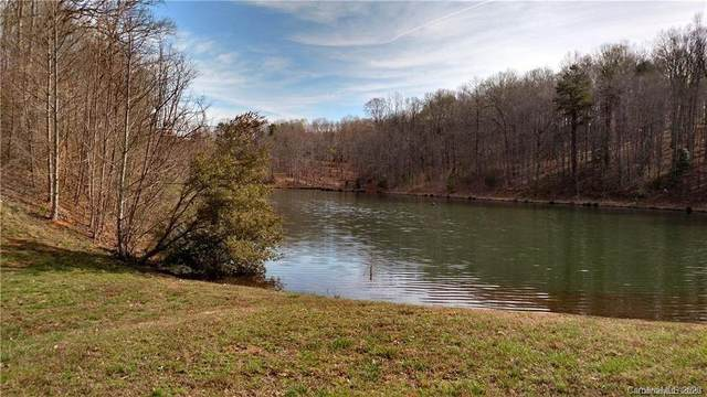 255 Harbor Ridge Drive, Statesville, NC 28677 (#3627361) :: DK Professionals Realty Lake Lure Inc.