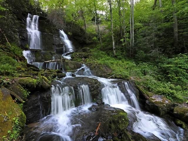 315 Shoals Falls Road, Hendersonville, NC 28739 (#3628631) :: NC Mountain Brokers, LLC