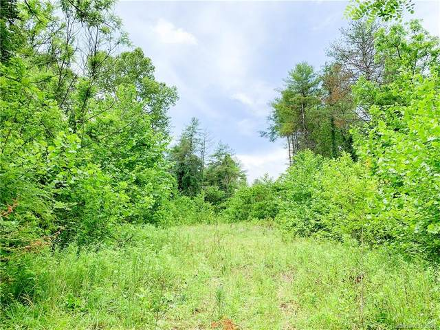 9999 Mearwild Drive, Marshall, NC 28753 (#3631301) :: Carlyle Properties