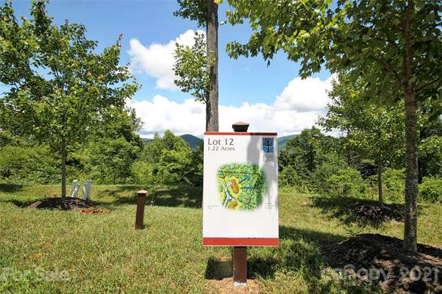 33 Grovepoint Way Lot 12, Asheville, NC 28804 (#3634375) :: Willow Oak, REALTORS®