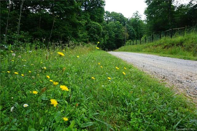 24 Hidden Acres Drive, Marion, NC 28752 (#3636802) :: LePage Johnson Realty Group, LLC