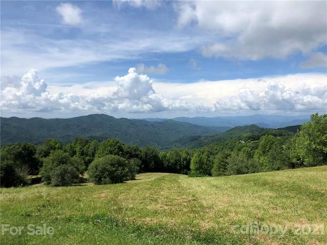 1656 Grasslands Parkway #14, Marshall, NC 28753 (#3637148) :: Stephen Cooley Real Estate Group