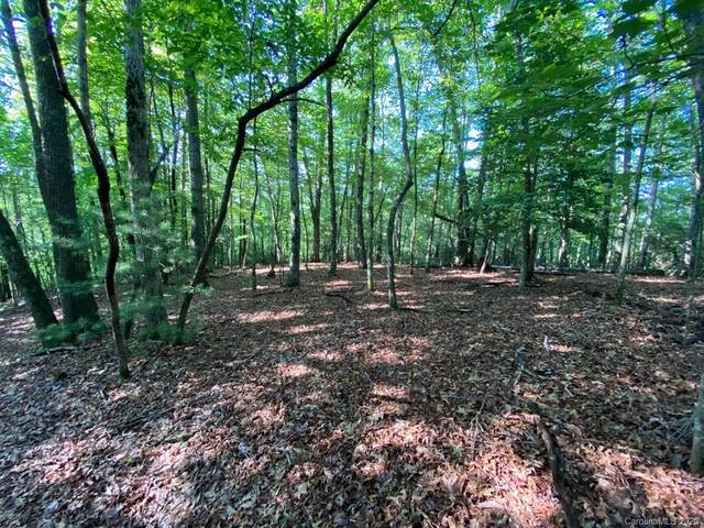 Lot 13 Cantrell Mountain Road, Brevard, NC 28712 (#3637870) :: Rinehart Realty