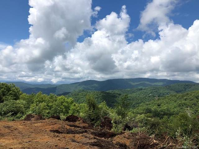 78 Plott Balsam Road 78 Wooly Back S, Maggie Valley, NC 28751 (#3641993) :: Mossy Oak Properties Land and Luxury