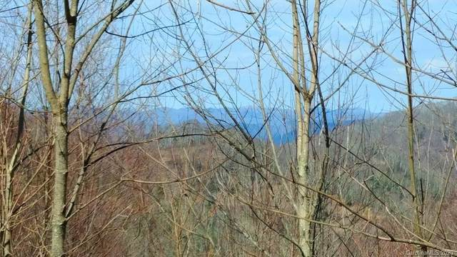 382 Adcock Mountain Road 6B, Waynesville, NC 28785 (#3642063) :: Robert Greene Real Estate, Inc.