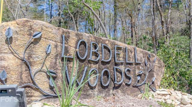 Lot 41 Lobdell Road #41, Pisgah Forest, NC 28768 (#3642211) :: Home and Key Realty