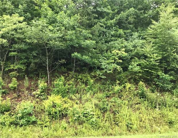 000 Spicer Cove Road 7 And 8, Hendersonville, NC 28792 (#3642709) :: Mossy Oak Properties Land and Luxury