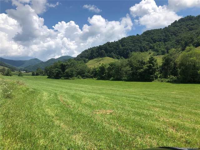 LOT 24 Buckeye Branch Drive #24, Clyde, NC 28721 (#3642753) :: Mossy Oak Properties Land and Luxury