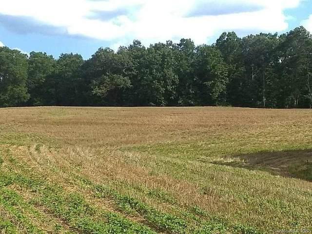 155 Pine Log Road, Polkton, NC 28135 (#3643007) :: Johnson Property Group - Keller Williams