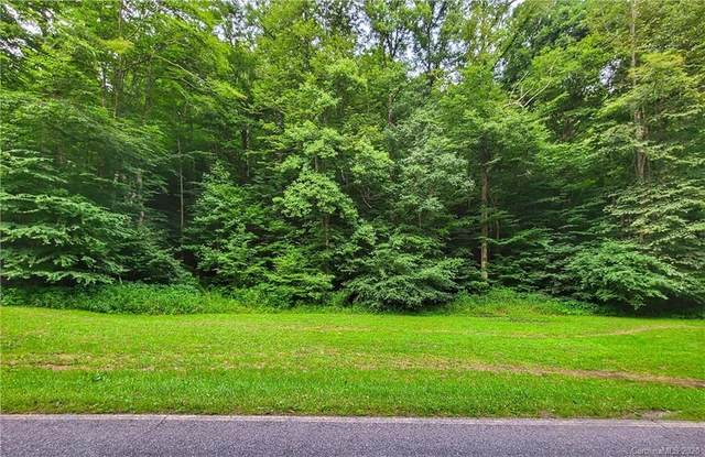 9999 Fox Creek Road #13, Burnsville, NC 28754 (#3643109) :: BluAxis Realty