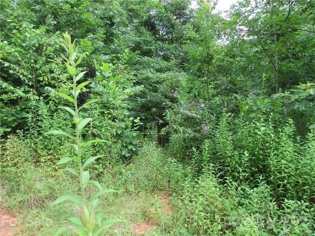 124 Hummingbird Drive #10, Rosman, NC 28772 (#3645417) :: Bigach2Follow with Keller Williams Realty