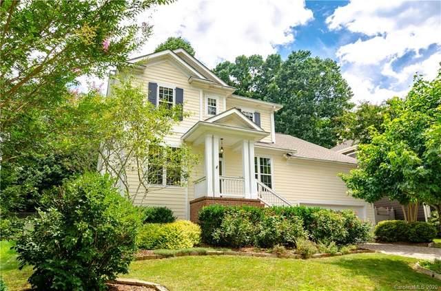 413 Mountain Wasp Drive, Biltmore Lake, NC 28715 (#3646075) :: Carlyle Properties
