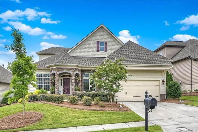 16817 Coves Edge Lane, Charlotte, NC 28278 (#3646385) :: High Performance Real Estate Advisors