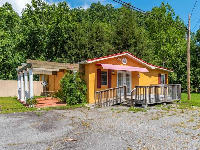 1113 Jonathan Creek Road, Waynesville, NC 28785 (#3647134) :: Zanthia Hastings Team