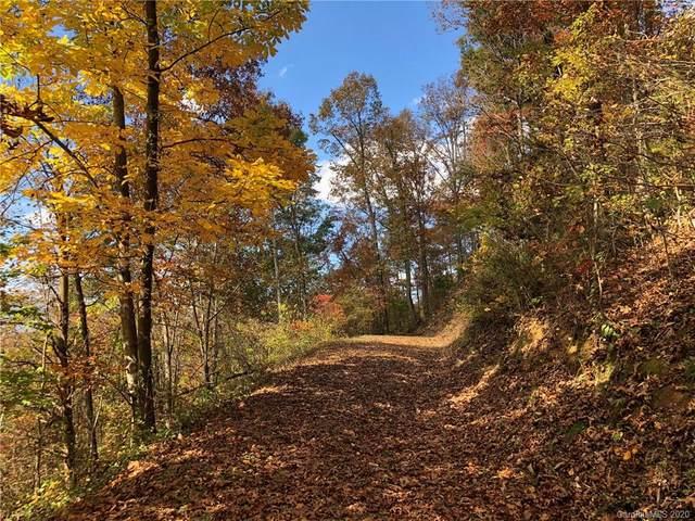 Lot 1 Johnson Farm Road, Canton, NC 28716 (#3649389) :: Robert Greene Real Estate, Inc.