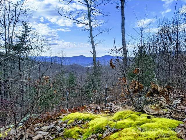 342 High Hickory Trail Trail #19, Swannanoa, NC 28778 (#3650429) :: High Performance Real Estate Advisors