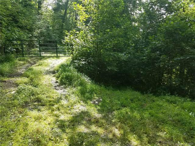 974 Meadow Fork School Road, Hot Springs, NC 28743 (#3651590) :: Keller Williams Professionals