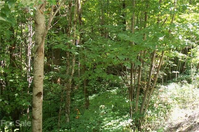 Lot 204 Slippery Rock Road, Waynesville, NC 28785 (#3657446) :: LePage Johnson Realty Group, LLC