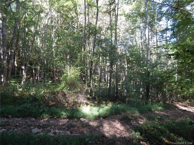 00 Gentry Farm Road, Spring Creek, NC 28743 (#3662691) :: Premier Realty NC