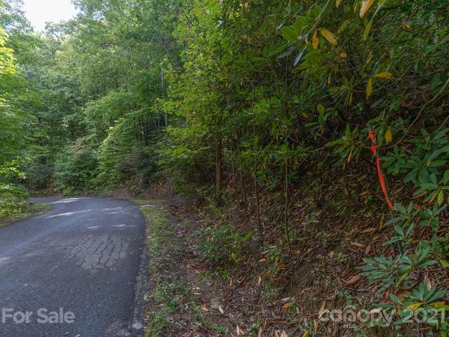 30 Frazier Magnolia Trail #19, Swannanoa, NC 28778 (#3668181) :: Stephen Cooley Real Estate Group