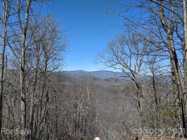 Lot T-66  23 Ninebark Lane T-66, Black Mountain, NC 28711 (#3670358) :: Stephen Cooley Real Estate Group