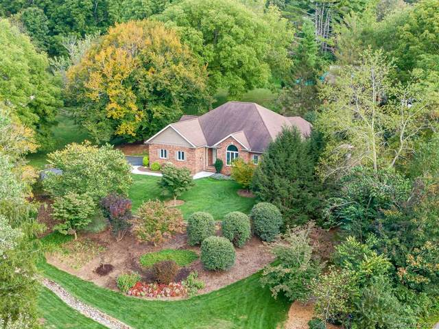 42 Wolfe Cove Road, Asheville, NC 28804 (#3670552) :: High Performance Real Estate Advisors