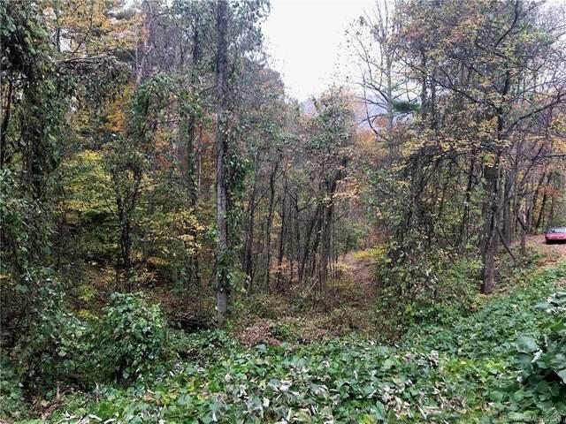 15 Beech Tree Lane S, Asheville, NC 28804 (#3671373) :: High Performance Real Estate Advisors