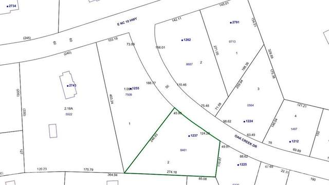 1255 & 1237 Oak Creek Drive 1A & 2A, Conover, NC 28613 (#3671647) :: LePage Johnson Realty Group, LLC