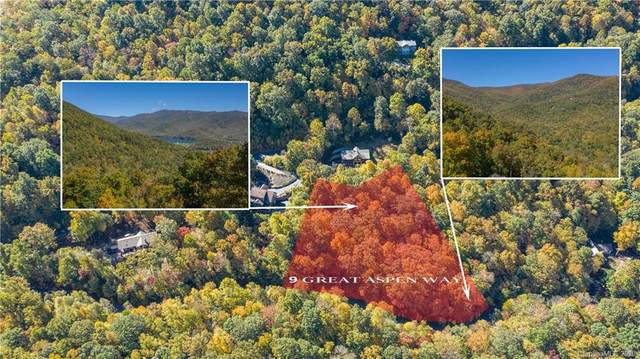 9 Great Aspen Way, Black Mountain, NC 28711 (#3673640) :: Love Real Estate NC/SC