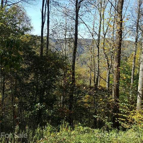 28 Appaloosa Trail, Waynesville, NC 28785 (#3673797) :: Odell Realty