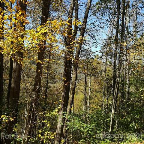 209 Lasso Lane, Waynesville, NC 28785 (#3673800) :: Odell Realty