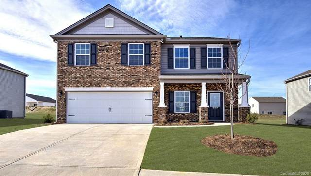 903 Rock Haven Drive, Charlotte, NC 28216 (#3675386) :: Stephen Cooley Real Estate Group