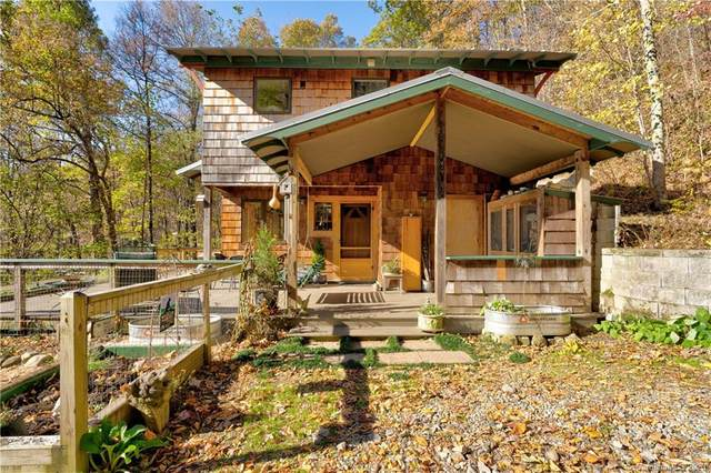 164 Southern Cross Road, Weaverville, NC 28787 (#3675761) :: Keller Williams Professionals