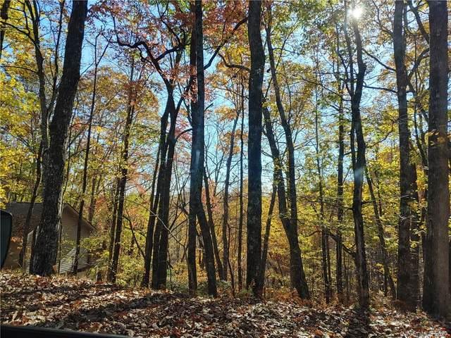 TBD Connestee Trail U09/L046, Brevard, NC 28712 (#3675932) :: LePage Johnson Realty Group, LLC