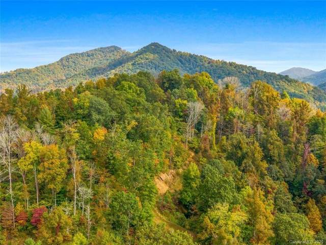 9999 off Sunnyside Drive #7, Marshall, NC 28753 (MLS #3677226) :: RE/MAX Journey