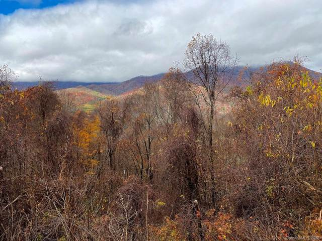 00 Forest Drive #2, Maggie Valley, NC 28751 (#3682770) :: LePage Johnson Realty Group, LLC